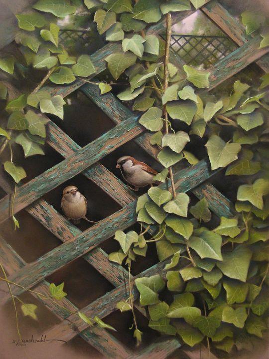 Sparrows on Fence - Rozller