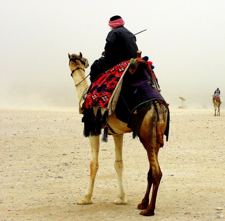 sand storm at the pyramides - Gallery Florette