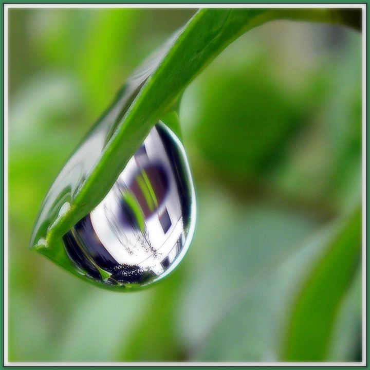 one house seen in one raindrop - Gallery Florette