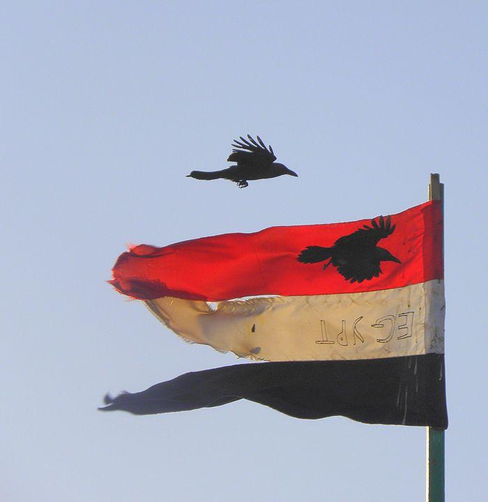 flag of Egypt - Gallery Florette