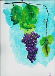 A Study of a GrapeFruit - JulioBP