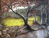 Tree by creek