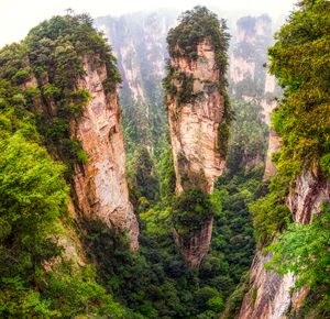 into the peaks of zhangjiajie - Aaron Choi Photography