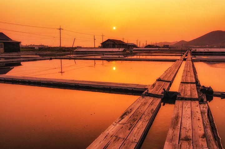 Sunset in Salt Farm - Aaron Choi Photography