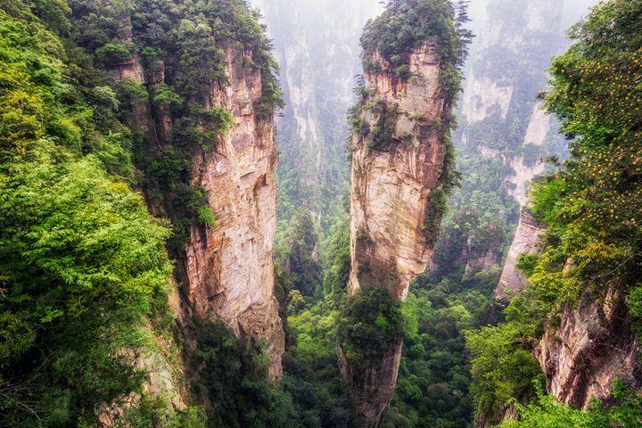 tall mountain peaks of yuanjiajie - Aaron Choi Photography