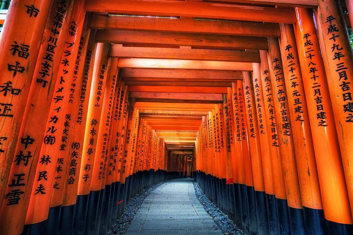 inari gates - Aaron Choi Photography