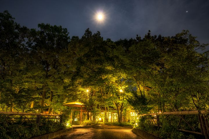 Yufuin golden forest at night - Aaron Choi Photography