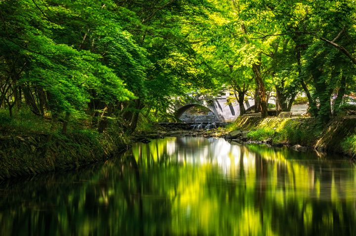 Summer reflections - Aaron Choi Photography