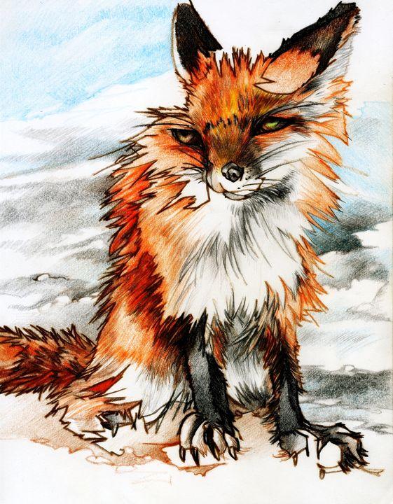 Fox - Chris Vanderhoof