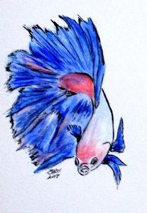 Art Doodle No. 33 Betta Fish