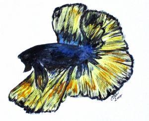 Art Doodle No. 34 Betta Fish