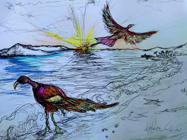 Island Birds - Ward Visuals