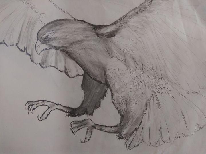 Hawk Talons - Ward Visuals