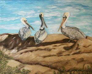 La Jolla Pelicans