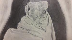 Cloth wiener dog study