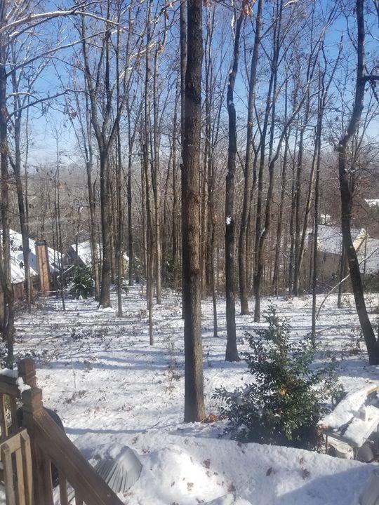 Snowday - Perk's Work
