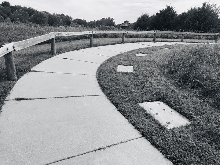 Nature Path - J Paul Gallery
