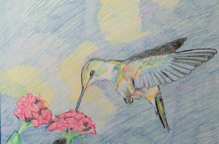 Hummingbird - Dante
