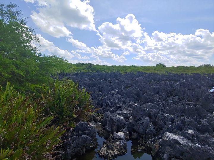 Hell - Cayman Islands - Gallery I