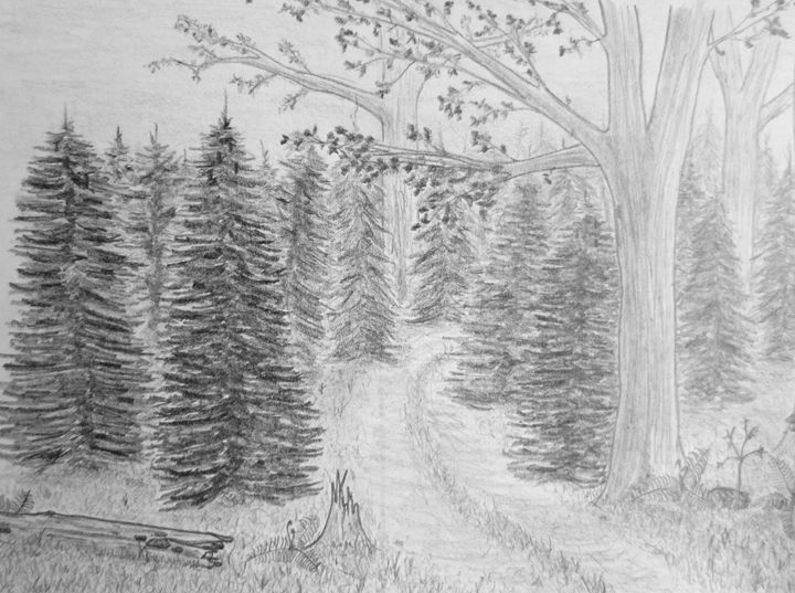 Forest trail - Michael Mad