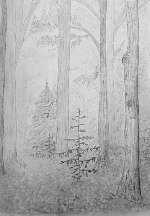 Tree beauty - Michael Mad