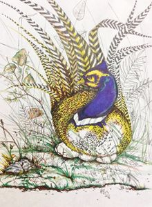 Pheasant Blue - Simply Drew