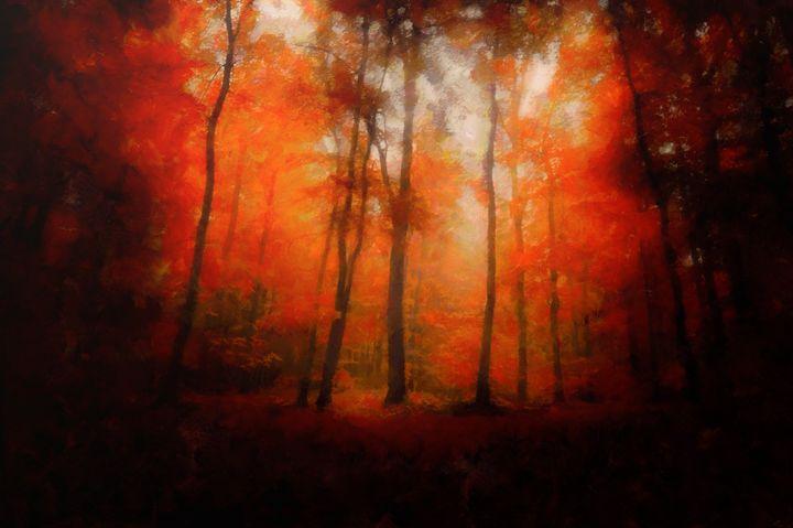 autumn glade - Luke Walker