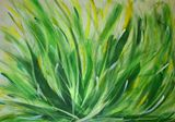 9 x 12 yellow & green plant