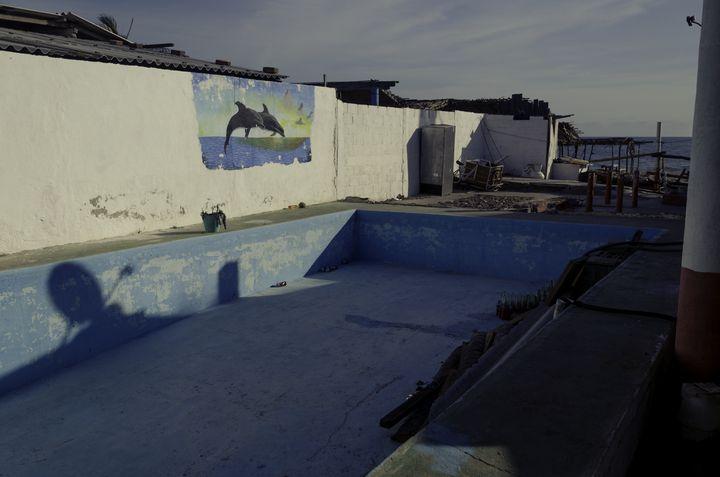 Delphines en seco - Raul Manzano