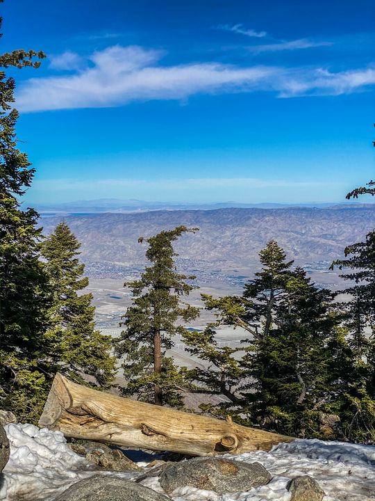 Desert View Trail No. 1 - Crystal Enciso Photography