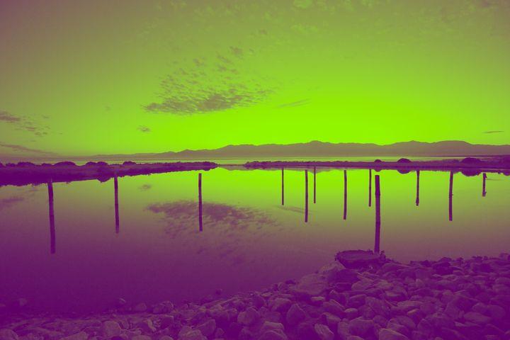 Green Salton Sea - Crystal Enciso Photography