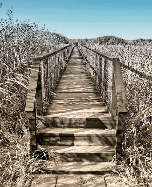 The bridge to elsewhere - vergul