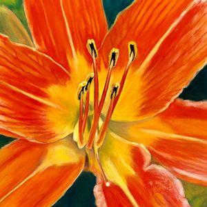 Pastel Daylily