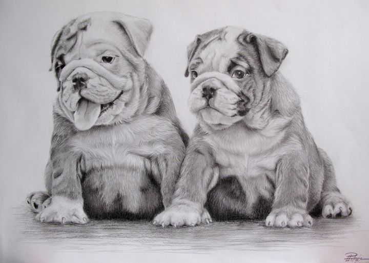 Bulldog puppies - Liga's Art