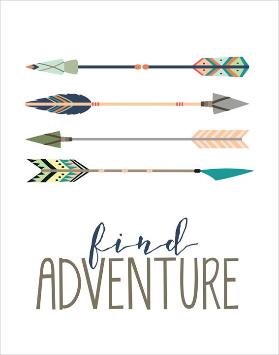Find Adventure - Friedman Gallery