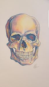 Coloured skull