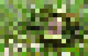 Green Telephone - Abby Digital Renders
