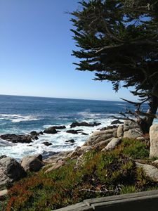 Pebble Beach Rocky Coast