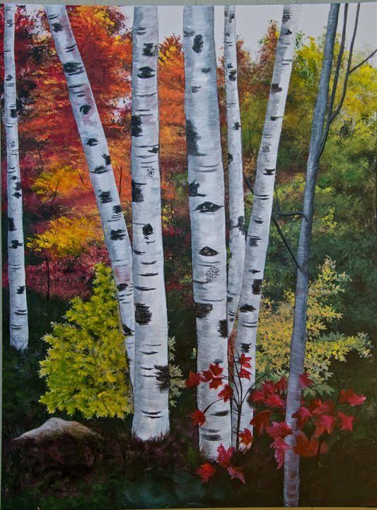 Birch Trees - Ochoa Designs