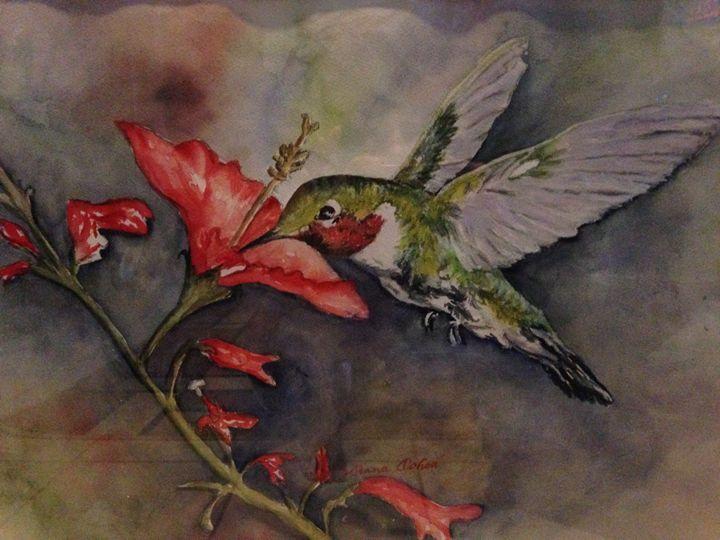 Humming Bird - Ochoa Designs