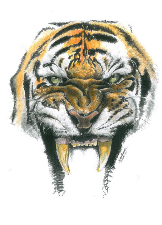 Tiger Face - KAZAGOVIC