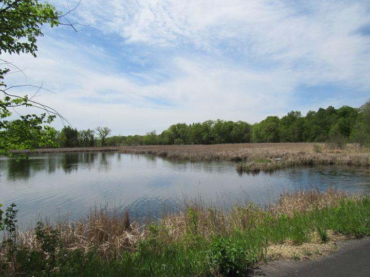 veiw of lake - Alexies Nicals