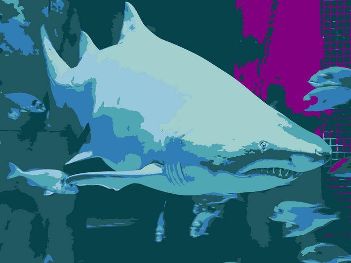 Shark vector derivation - NubesDesignCH