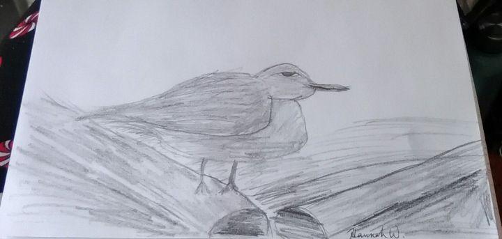 Bird on a log - Hannah Whitehead