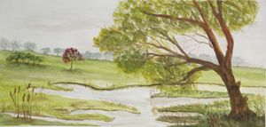 Undulating grassland and still water