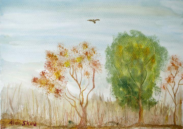 Bird over scrubland. - Alan Skau
