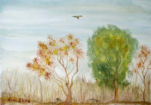 Bird over scrubland.