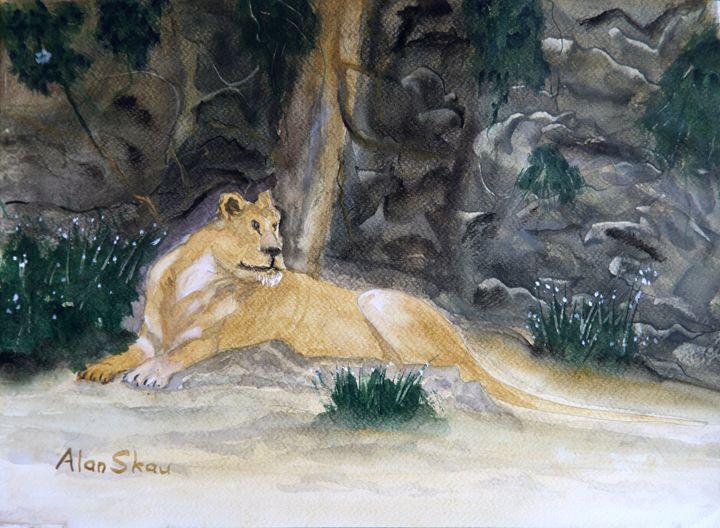 Lioness resting. - Alan Skau