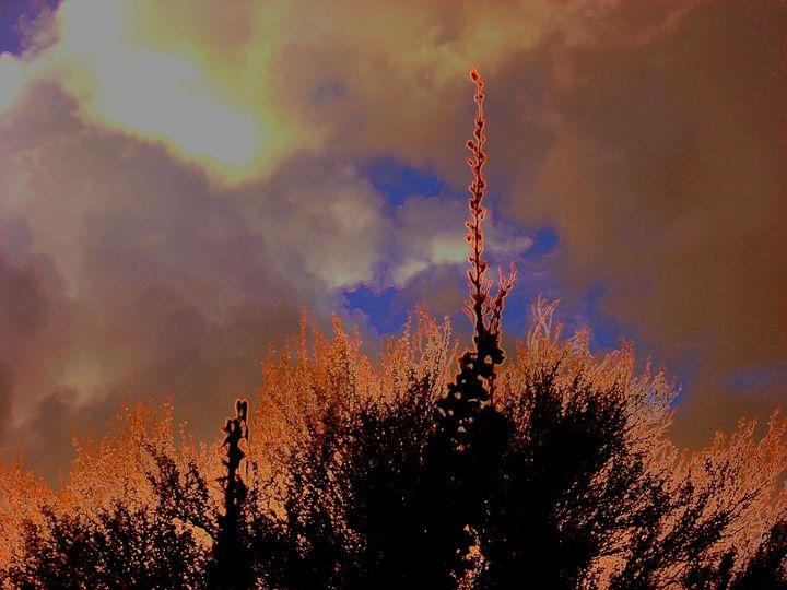 Sunset fire - C&J fine arts