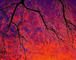 Flaming Sunset Fantasy